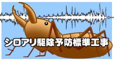 1,000円ポッキリ(経費税別)からシロアリ駆除やってます。~ 白蟻防除施工の新キャンペーン